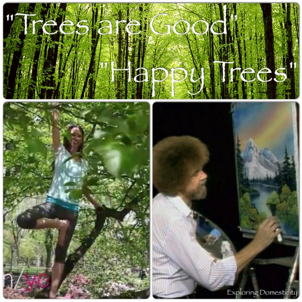 Happy trees with Tara Stiles and Bob Ross