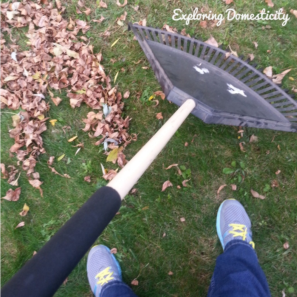 Fall activity: raking