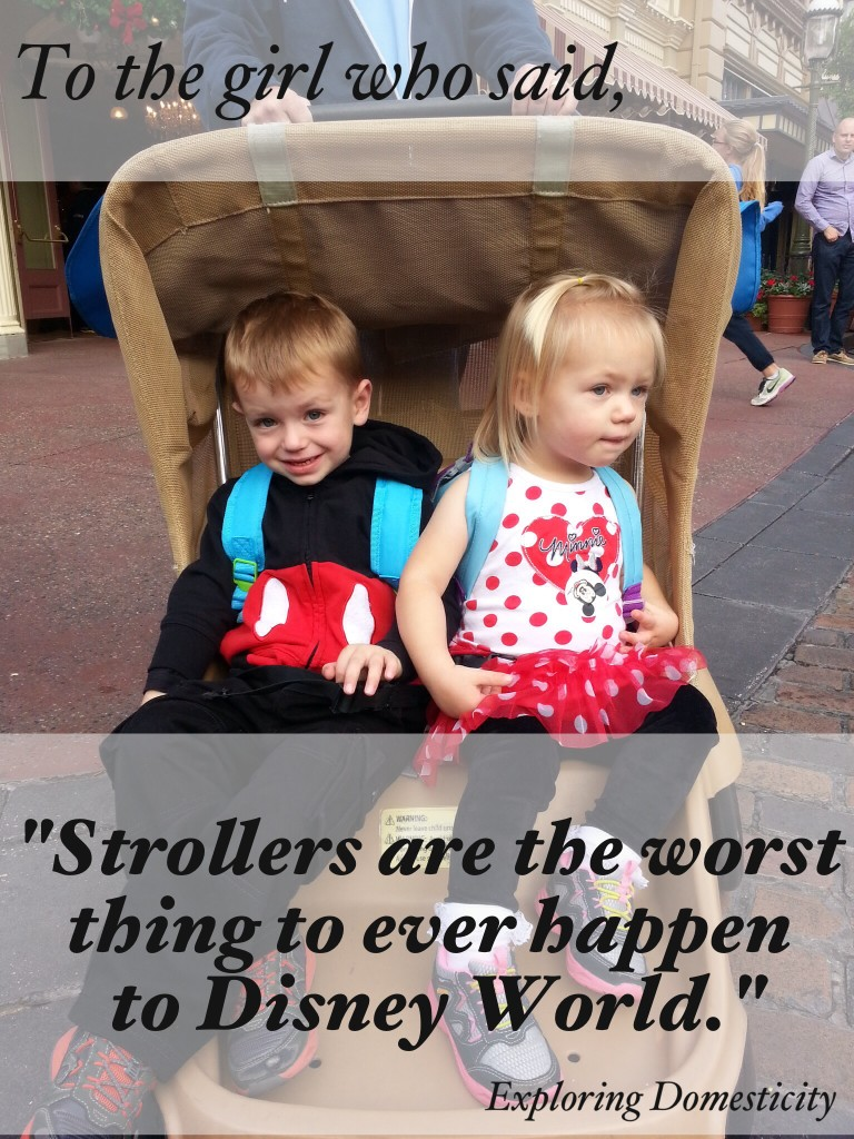 "To the girl who said, ""strollers are the worst thing to ever happen to Disney World"""