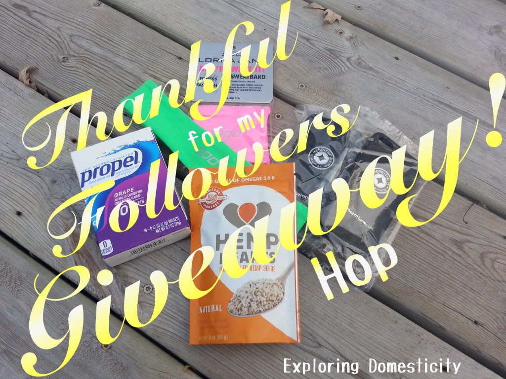 Thankful for my followers giveaway hop prizes