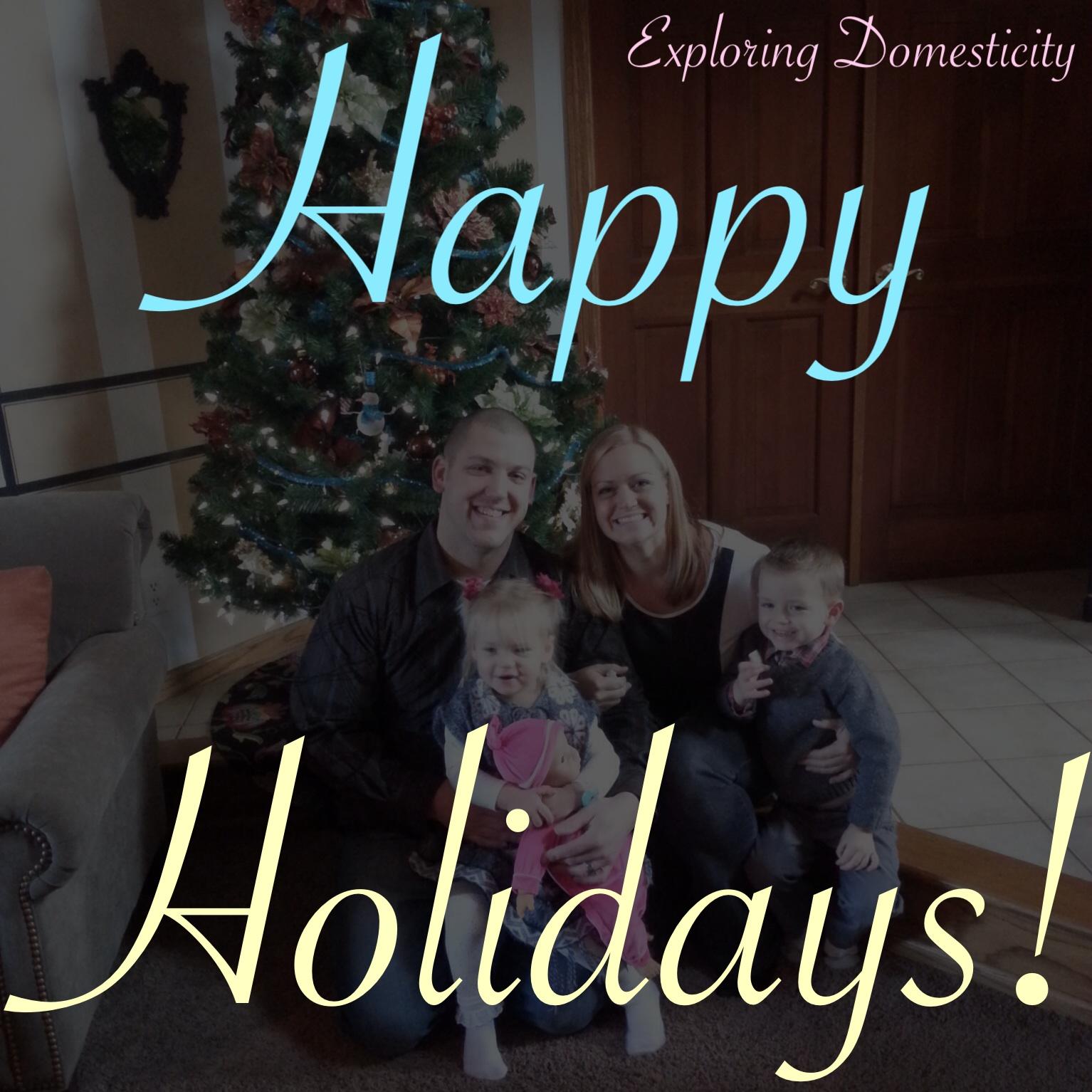 Exploring Domesticity Holidays 2014