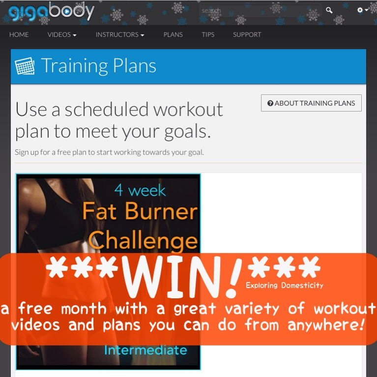 Gigabody Review: win a free month of a great varieties of workout videos you can do anytime from anywhere!