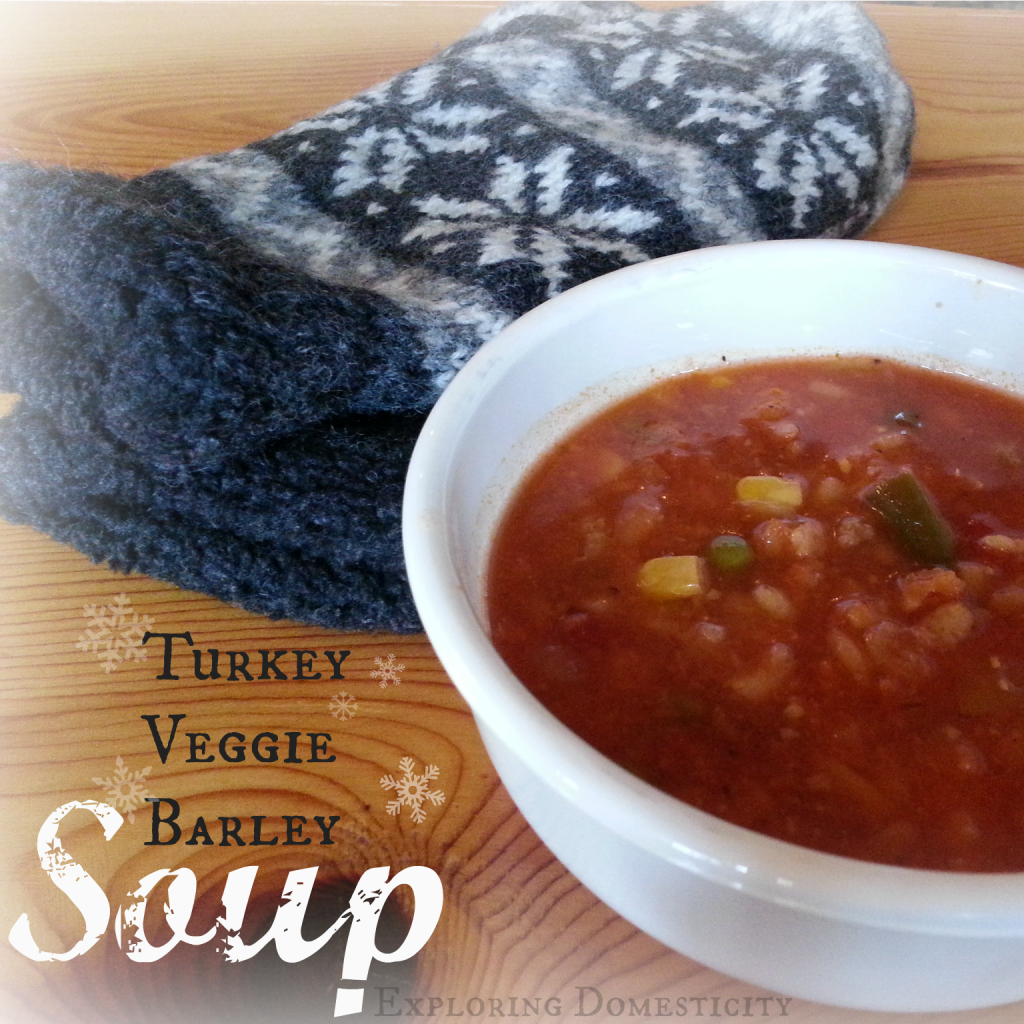 turkey veggie barley soup title