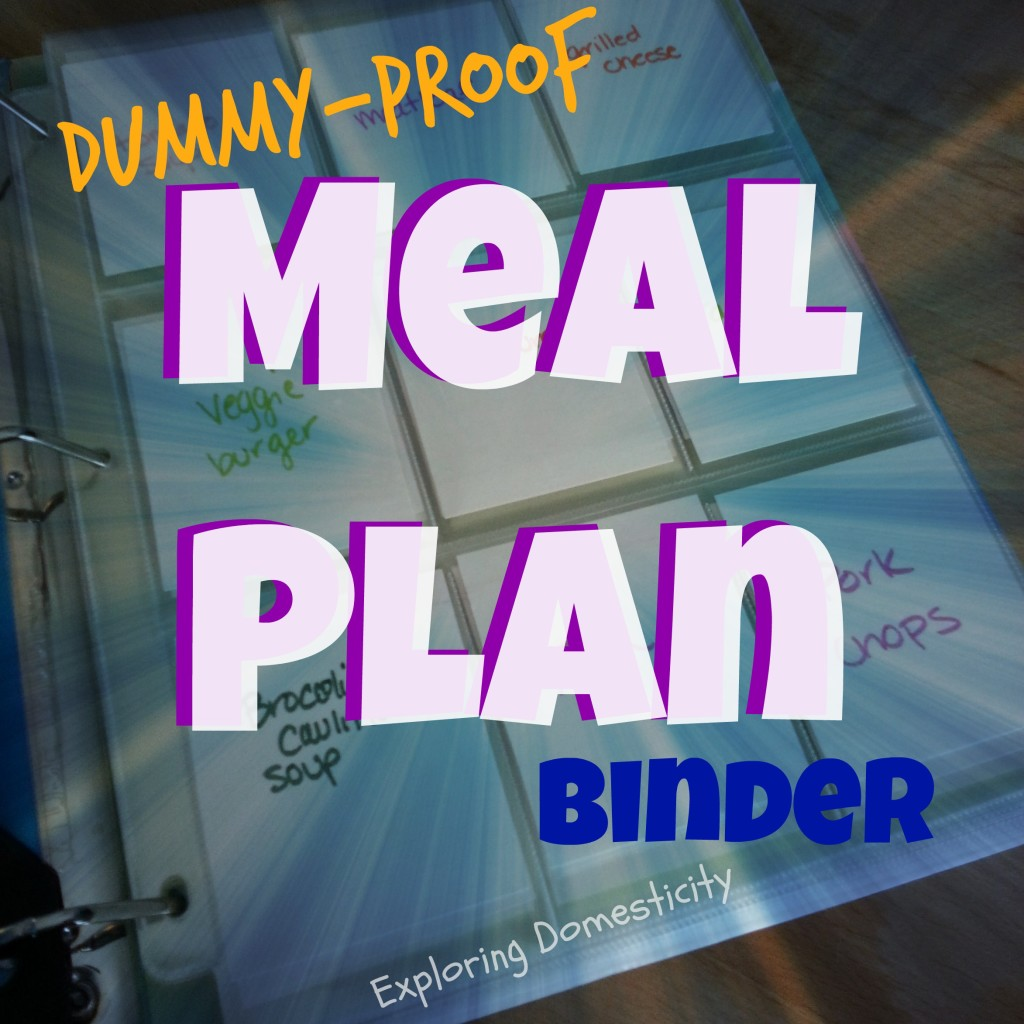 dummy proof meal plan binder title
