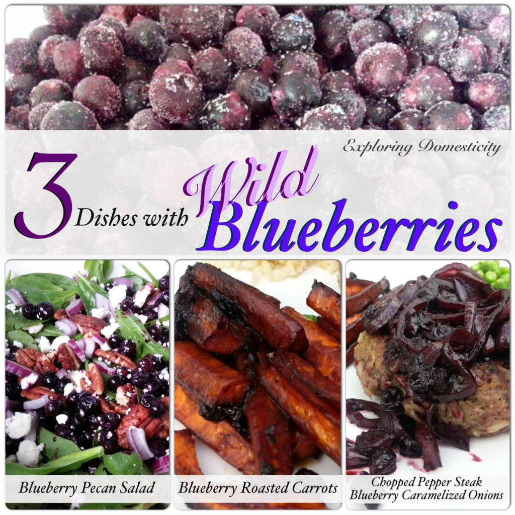 3 Dishes with wild Blueberries