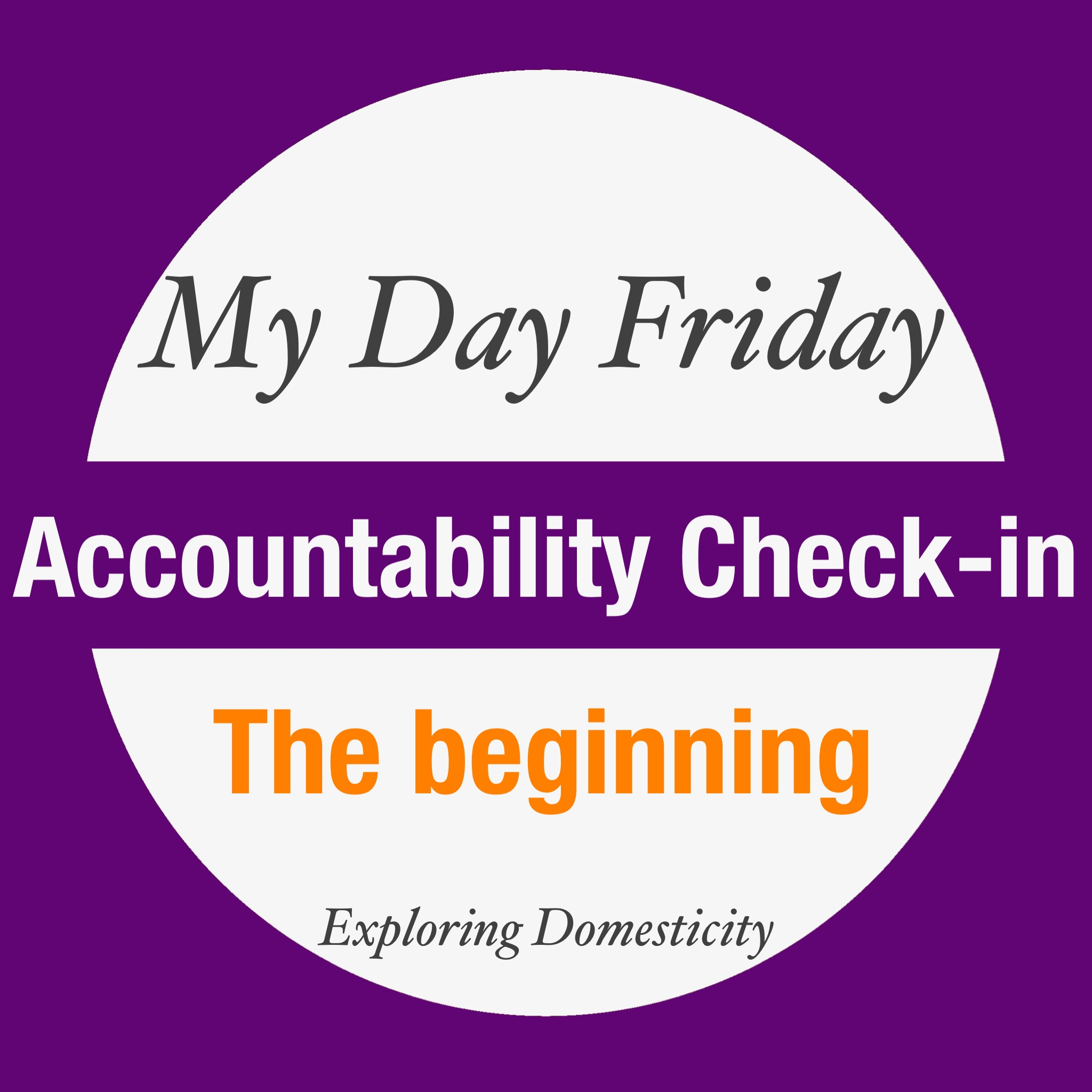 My Day Friday Accountability Check-in: the beginning