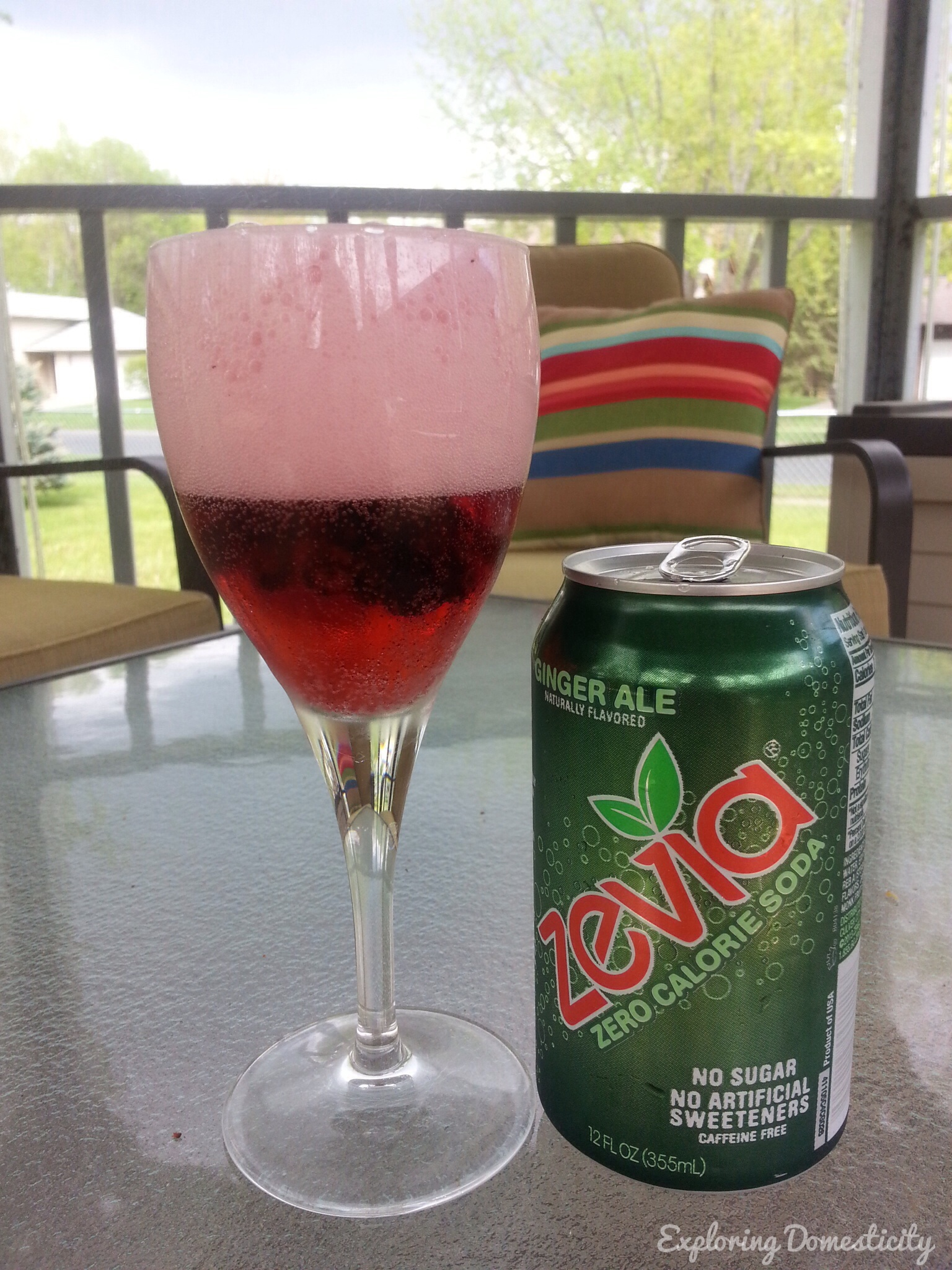Zevia Ginger Ale with frozen wild blueberries #TheNewSweet