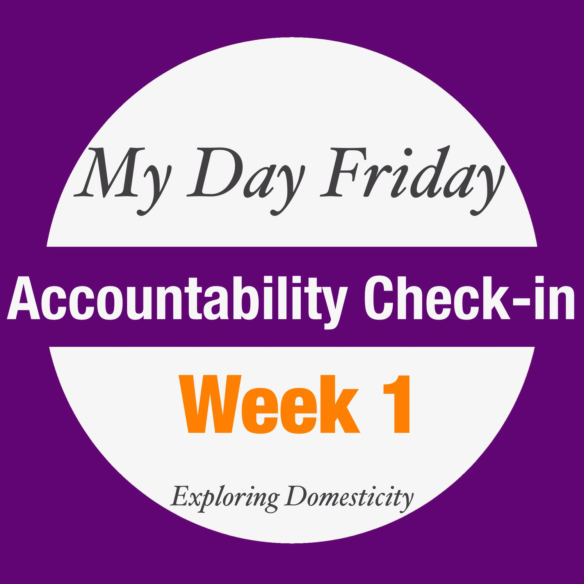 My Day Friday Accountability Check-in: Week 1