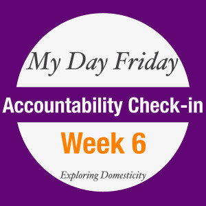 my day friday accountability check-in: week 6