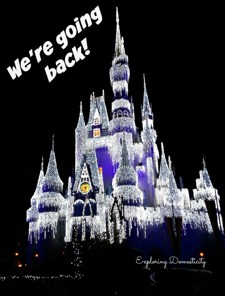Walt Disney World castle - we're going back