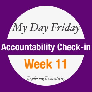 My Day Friday Accountability Check In: Week 11