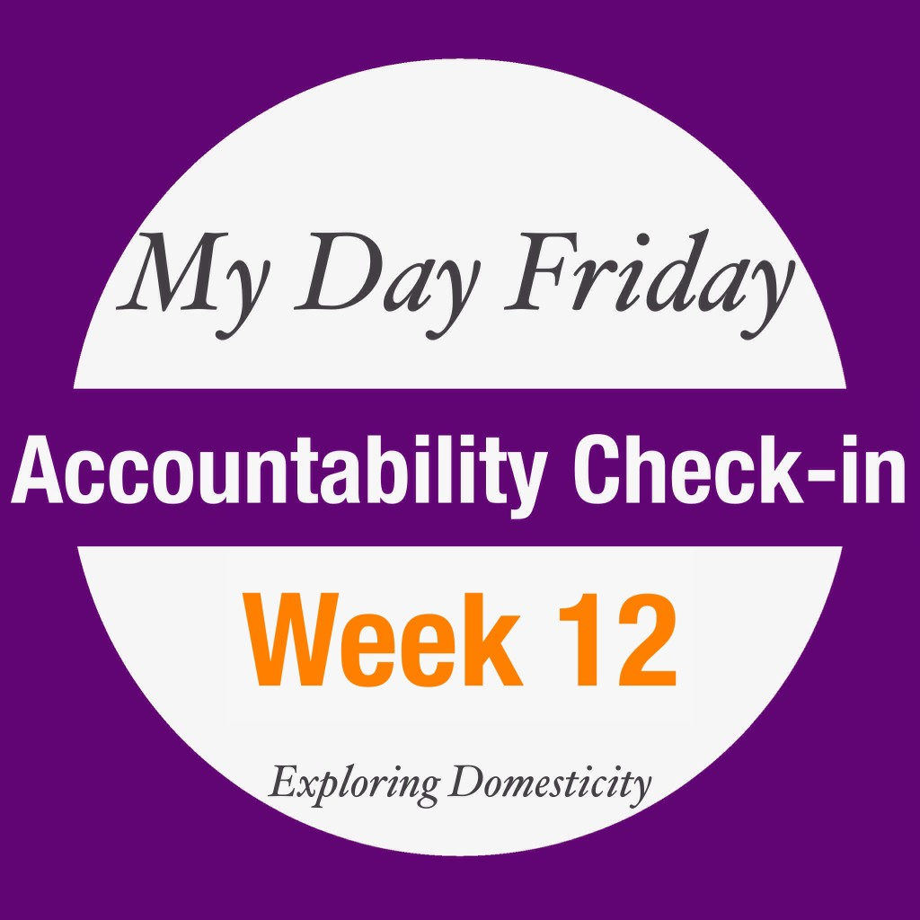 My day Friday accountability check in week 12