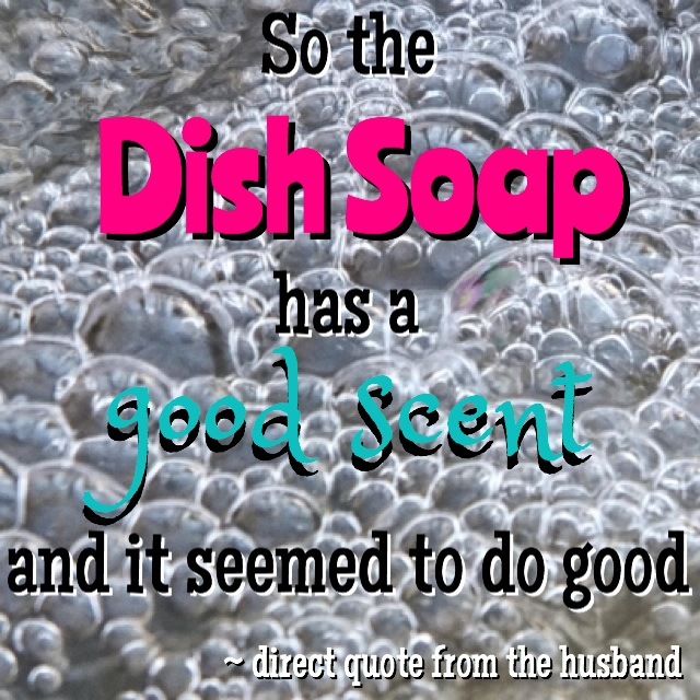 Blogger's husband review Frosch dish soap