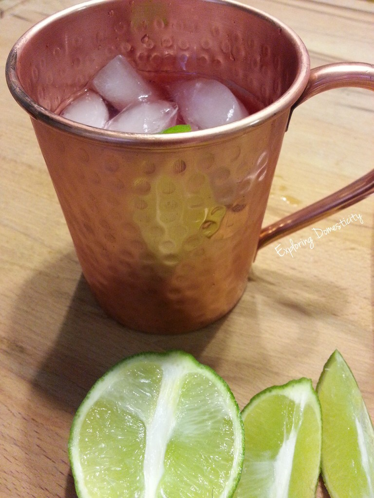 Cranberry Moscow Mule {non-alcoholic and alcoholic}