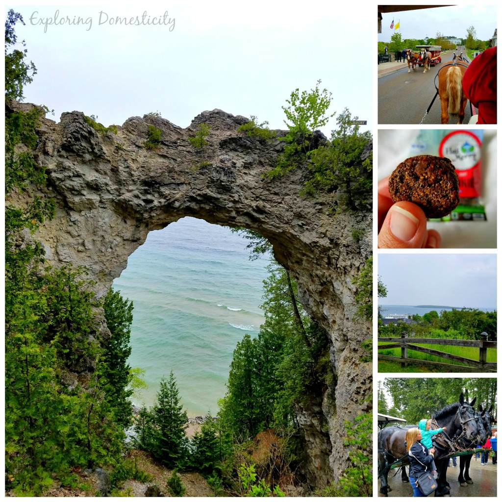Mackinac Island: ferry, horses, arch rock, and beautiful views