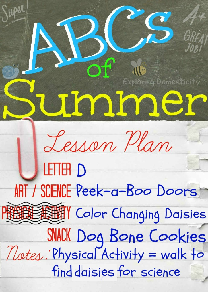 ABCs of Summer Lesson Plan Letter D