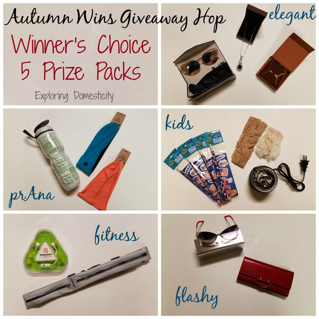 Autumn Wins Giveaway Hop - Winner's Choice 5 prize packs