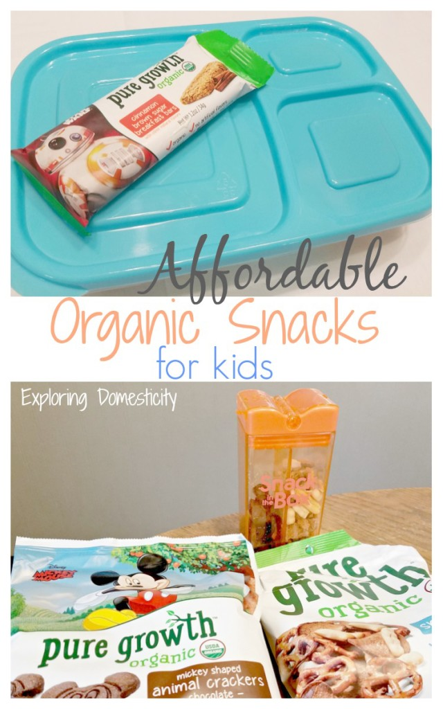 Affordable Organic Snacks for kids