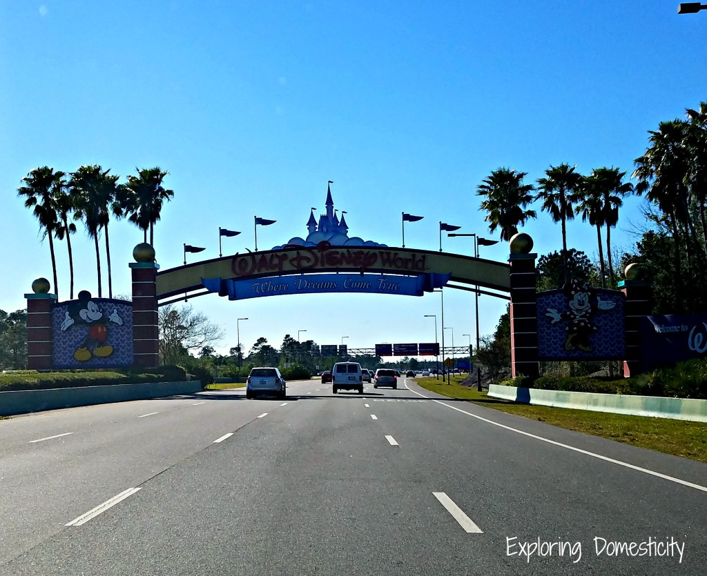 Walt Disney World Vacation 2017