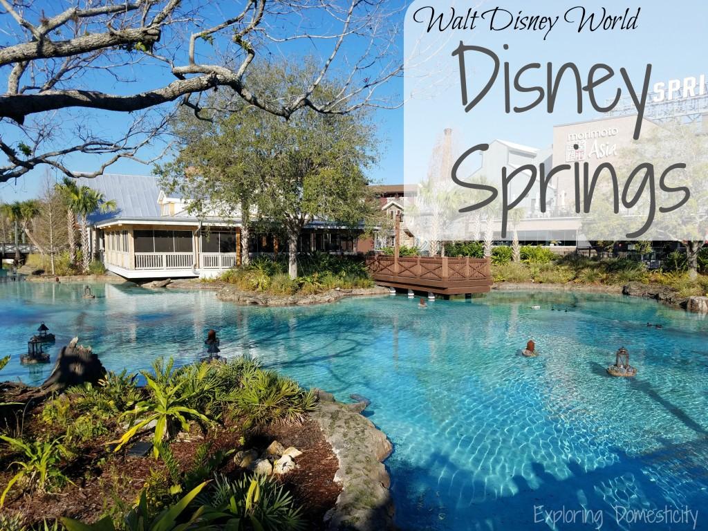 Disney Springs 2017