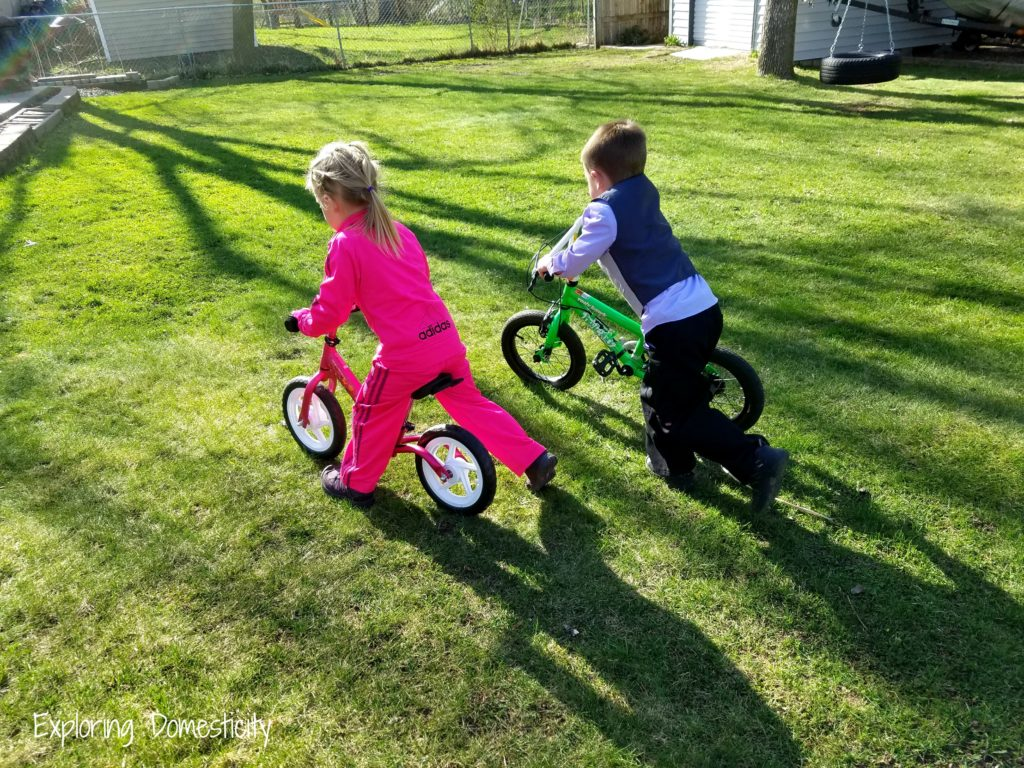 Scraaam Balance Bike - great transition to pedal bike