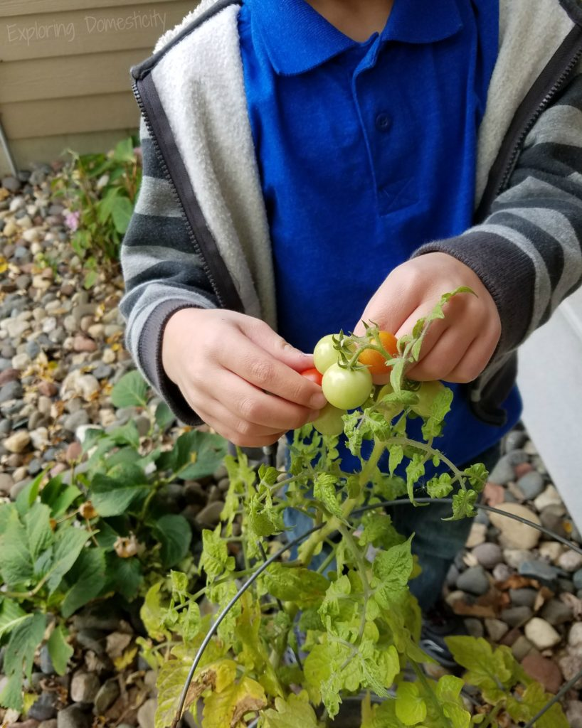 Help Kids Care About the Environment with Gardening and Composting