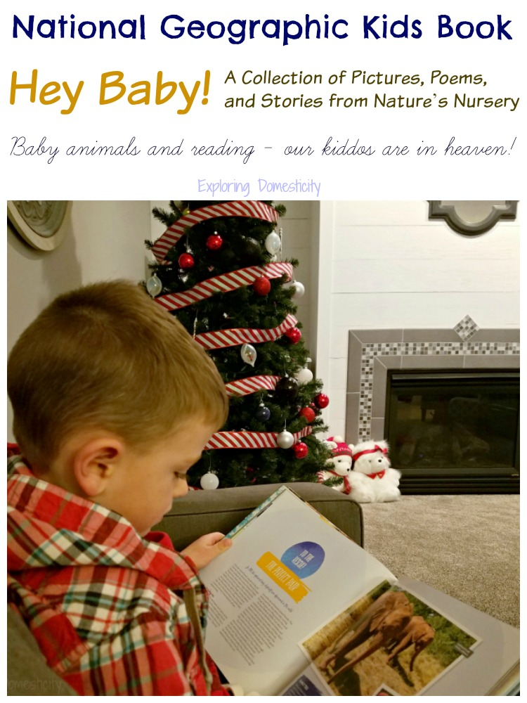 National Geographic Kids book - Hey, Baby! A Collection of Pictures, Poems, and Stories from Nature's Nursery - baby animals and reading