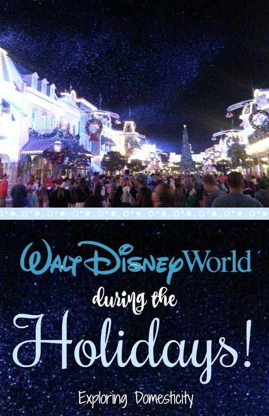 Walt Disney World During the Holidays - Why a Disney World Christmas is a must!