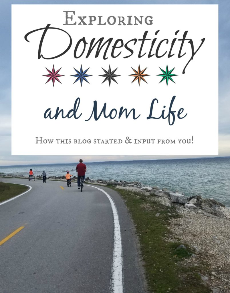 Exploring Domesticity and Mom Life - How this blog started, and input from you!