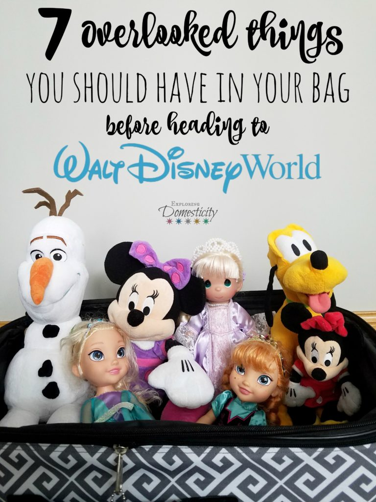 7 Overlooked things you should have in your bag before heading to Walt Disney World