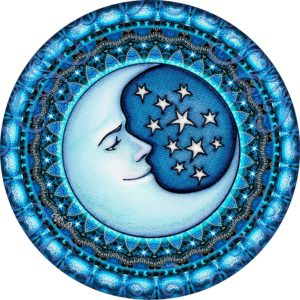 Blue Moon Camper Spare Tire Cover